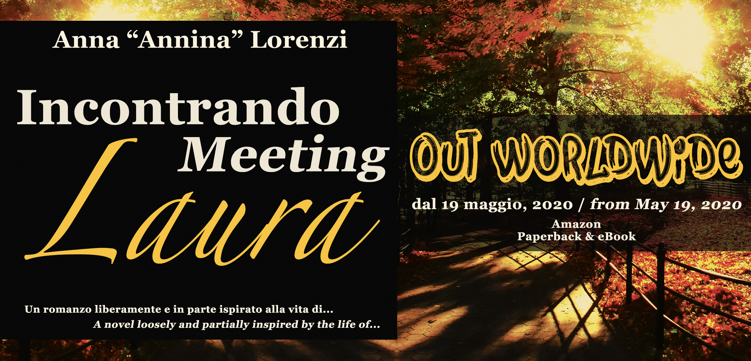 Incontrando/Meeting Laura - Un romanzo... / A novel...