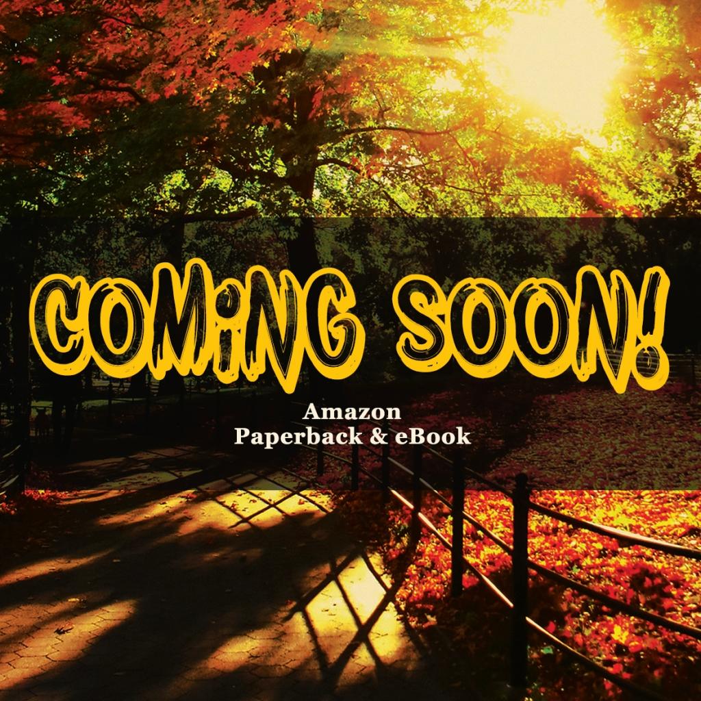 Incontrando / Meeting Laura - Coming Soon - Amazon Paperback & eBook